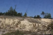 Paliessie, southwards of Prypiats' valley, sand dune massif